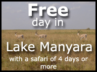 Free day in Lake Manyara with a safari of 4 days or more
